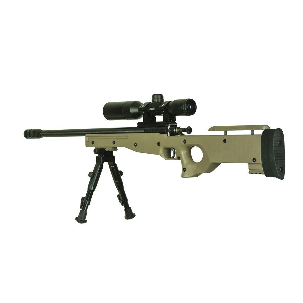 Crickett Precision Rifle Package