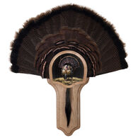 Walnut Hollow Deluxe Turkey Display Kit with Full Fan Image