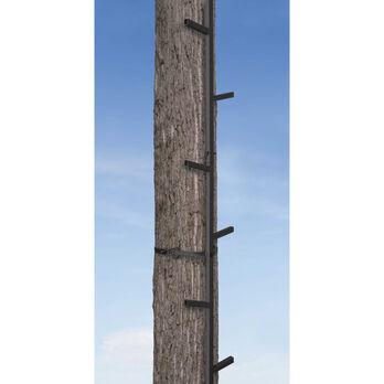 Big Game Treestands Quick-Stick Climbing System