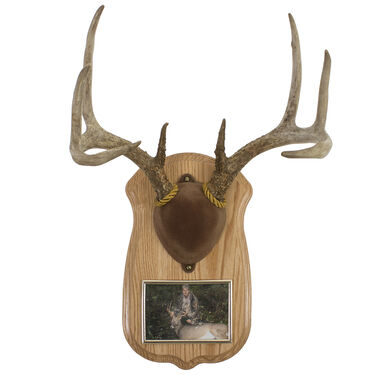 Walnut Hollow Deluxe Antler Display Kit, Solid Oak with Photo Frame