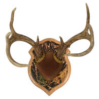 Walnut Hollow Deluxe Antler Display Kit, Solid Oak with Camo