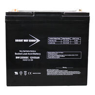 Bright Way 12V 55Ah AGM Battery