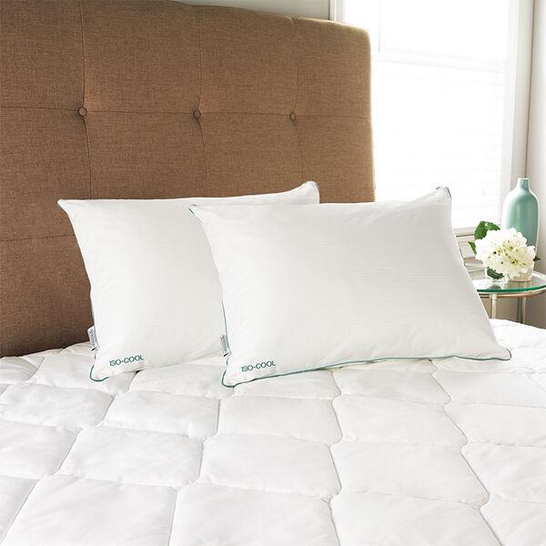 Carpenter Isotonic Iso-Cool Memory Foam Pillow