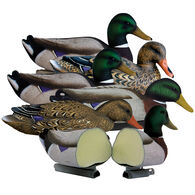 Higdon Decoys Magnum Mallard Foam-Filled Decoy, 6-Pack