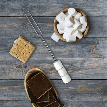 Fred TOASTY Marshmallow Roasting Skewers, 4-Pack