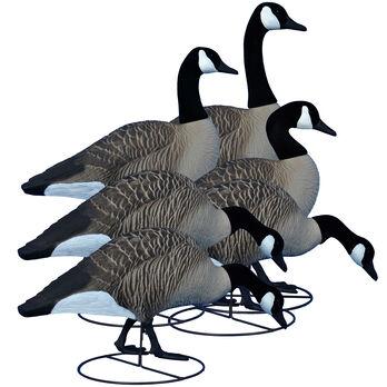 Higdon Alpha Magnum Full-Body Canada Goose Decoys, 6-Pack
