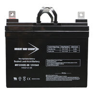 Bright Way 12V 35Ah AGM Battery