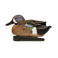 Avian-X Topflight Blue-Winged Teal Series Decoys, 6-Pack