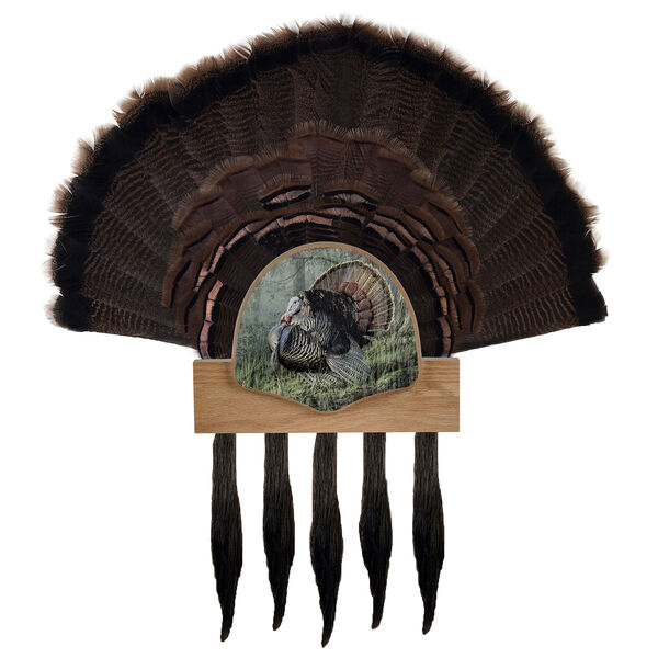 Walnut Hollow Five Beard Turkey Display Kit, Oak with Image