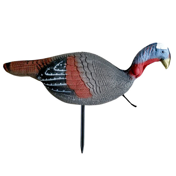 Sportsman 365  Upright Jake Turkey Decoy