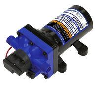 Everflo 5 GPM 12V RV Water Pump