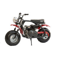 Coleman Powersports BT200X Mini Bike, Black Frame