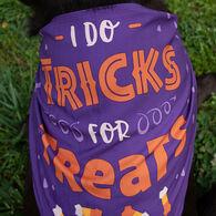 Halloween Tricks or Treats Pet Bandana