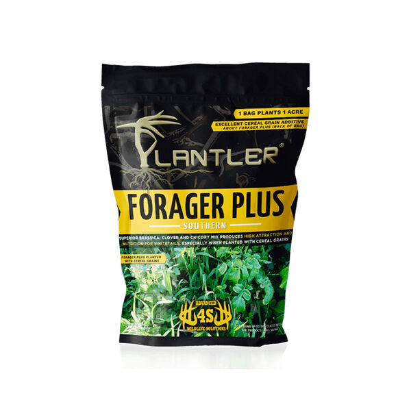 4S Plantler Forager Plus Southern Mix, 7 lbs.