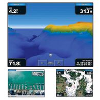 Garmin BlueChart g2 Vision - Southwest Florida