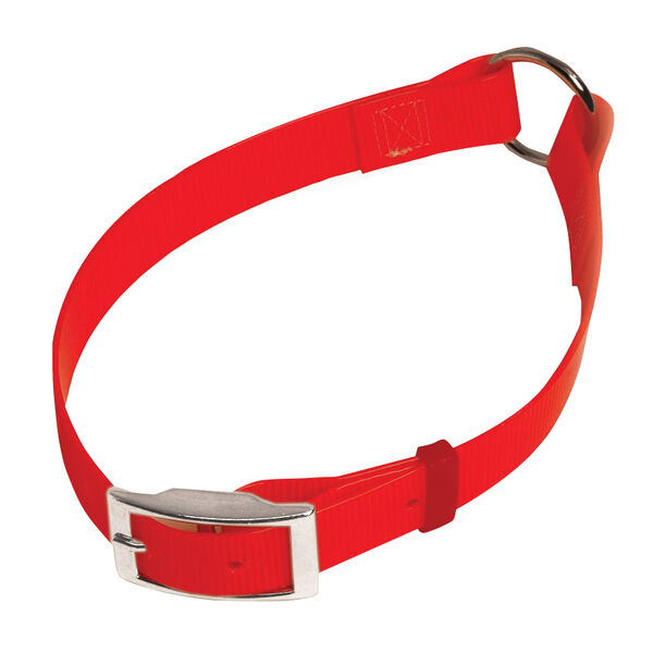 "Scott Pet Bio Collar, 1"" x 22"""