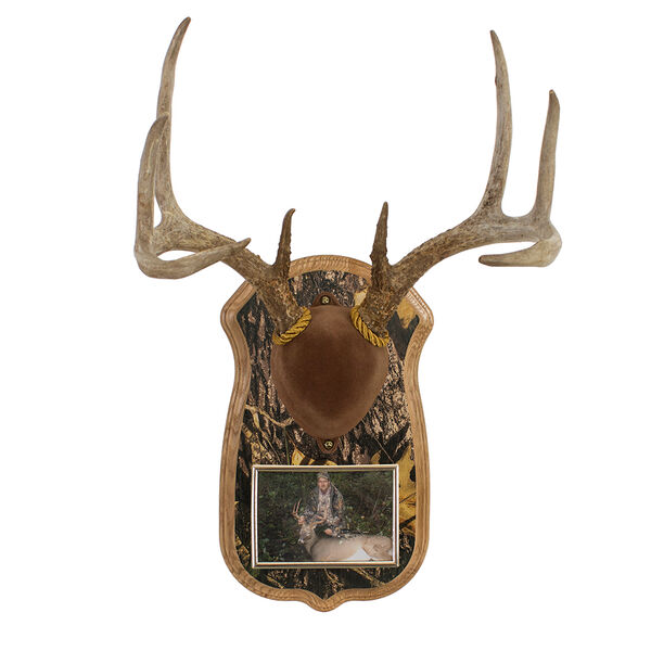 Deluxe Antler Display Kit and Frame, Solid Oak/Camo