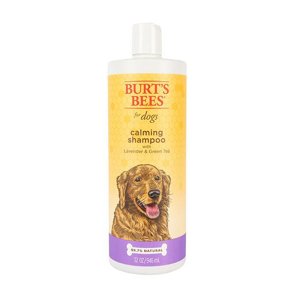 Burt's Bees Calming Shampoo for Dogs, 32 oz.