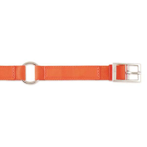 """Scott Pet Hot Orange Field Collar, 1""""W x 18""""L"""