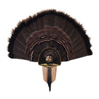 Walnut Hollow Turkey Display Kit with Full Fan Image