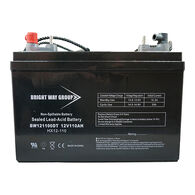 Bright Way 12V 110Ah AGM Battery