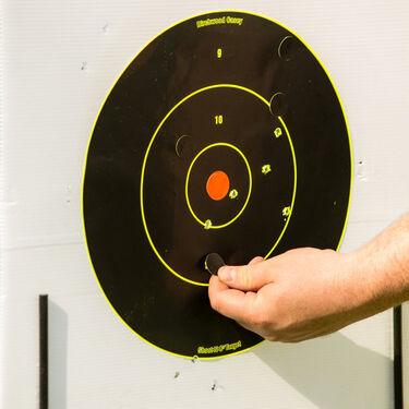 """Birchwood Casey Shoot-N-C 8"""" Bull's-Eye Targets, 6-Pk."""