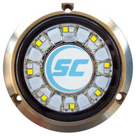 Shadow-Caster Color-Changing Bronze Underwater Light – 16 LEDs, Blue/White