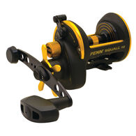 PENN Squall Star Drag Conventional Reel