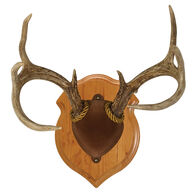 Walnut Hollow Deluxe Antler Display Kit, Solid Cherry