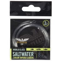 Fenwick World Class Nylon Saltwater Leaders, 2-Pack