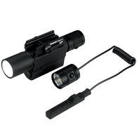 iProtec RM400LSG 400 Lumen Light/Green Laser Sight