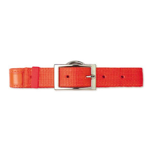 "Scott Pet Hot Orange Field Collar 1""W x 18""L Reflexite"