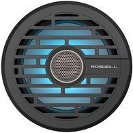 """Roswell R1 6.5"""" In-Boat Speaker - Black"""
