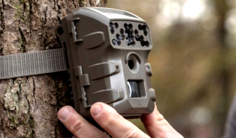 Save on trail cameras