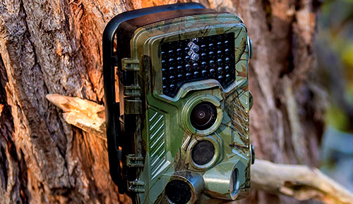 Save up to 35% on Game Cameras & Electronics