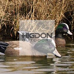 Higdon