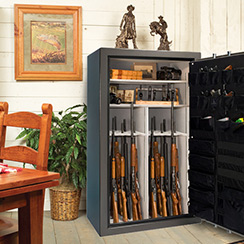 Firearms Storage & Security